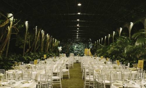 boda-jardin-botanico-malaga