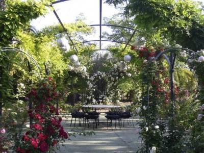 jardines-finca-carambuco